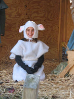 sam-as-a-lamb