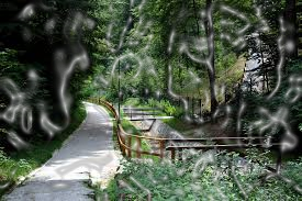 long-walks-edited